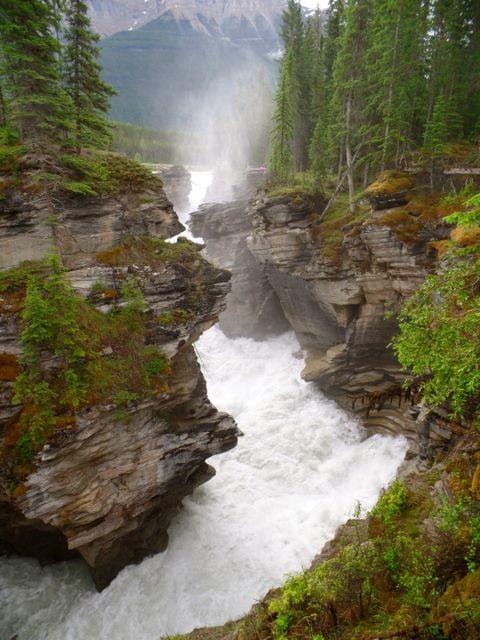 Mistaya Falls