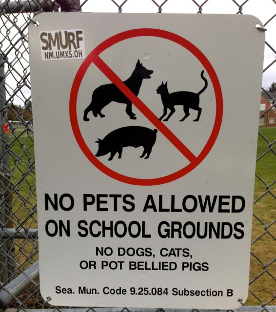 ... and they wouldn't let me bring my pot-bellied pig.  Commies!